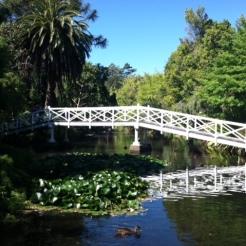 The now beautiful Eel Pond, Queen's Gardens.