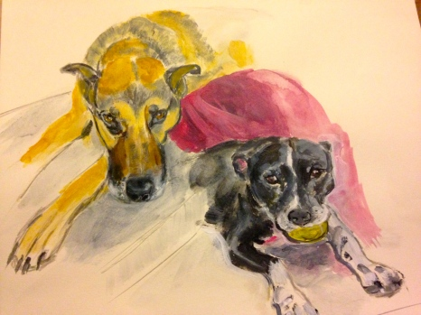 My water color of Jack and Bella, Susie and Jon's faithful companions, and a gift to Susie and Jon. (I think they help keep the snakes away!)