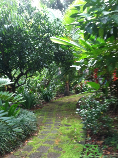 A walk way in the gardens that shows the fruits of my weeding labor!