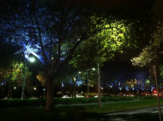 A view of St. Kilda's road along the Arts District, with its illuminated trees issuing a heavenly, blue glow at night.