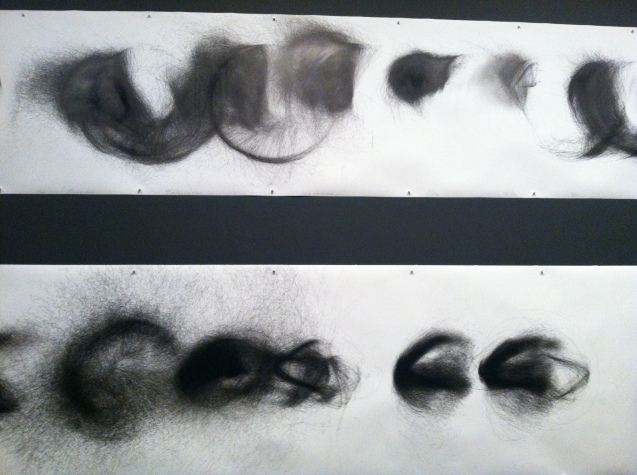 Cameron Robbins wind drawings--pigment ink on paper--duration several days.