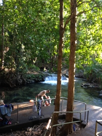 Easily accessible Wangi Falls and another swimming pool to enjoy.