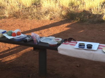 "Setting up gourmet snacks at the viewing station to watch the sun set over the Bungle Bungles. A very expensive APT tour group set up next to us. What they were serving couldn't compare with Gayl's ""foodie"" nibbles!"