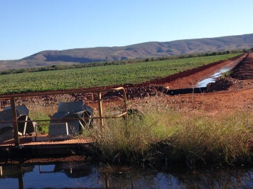 Shot of an irrigation channel at a local farm.