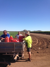 Visiting one of the local farms in Kununurra growing seed crops such as chic peas and chia seeds.