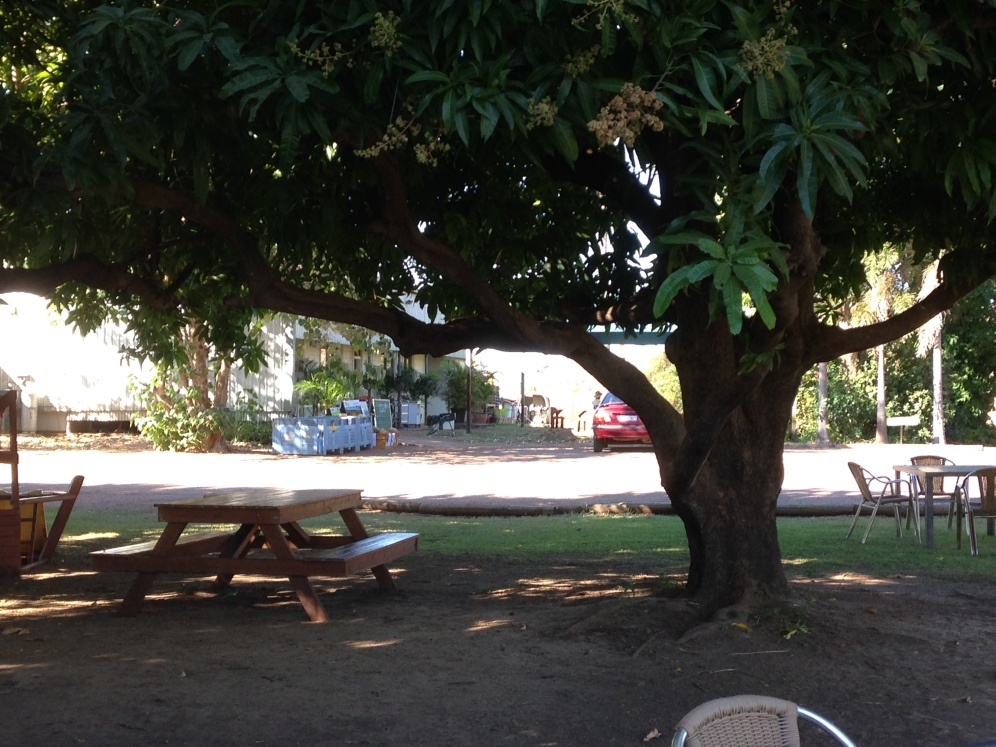 Shot of Ivanhoe Cafe and the shaded sitting area just outside the Kununurra CBD.