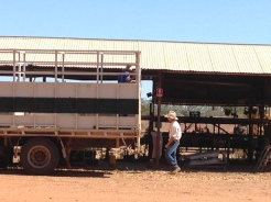 Looking a the back-end of one section of what will become a road train that will haul live cattle to either Darwin, Broome, or Wyndham to be shipped to Indonesia. Pictured is Bob, who can literally fix anything!