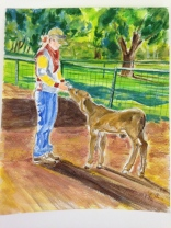 A painting I did of Sarah feeding the poddies. A parting gift to her for being such a great friend and teacher.