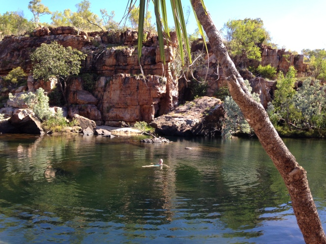 Couldn't resist swimming at one of the silken pools at Manning Gorge.