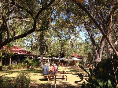 At the Emma Gorge Resort, part of the El Questro Wilderness Park before hiking into Emma Gorge. There is a terrific restaurant and beautiful tented cabins if you want luxury accommodations!