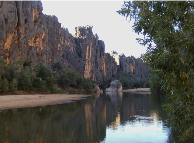 Windjana Gorge with plenty of fresh water crocodiles to see. A walk along the valley includes seeing fossilized ancient sea creatures etched into the rock of the gorge.